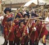 Tortosa Renaissance Festival wallpaper - pikeman